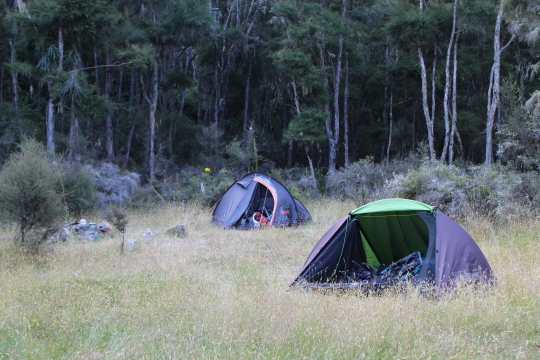 Fly fishing, Kaweka campsite