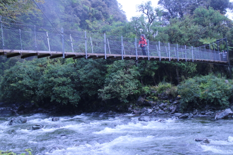 Swing bridge before Hidden Falls Hut, Hollyford Track