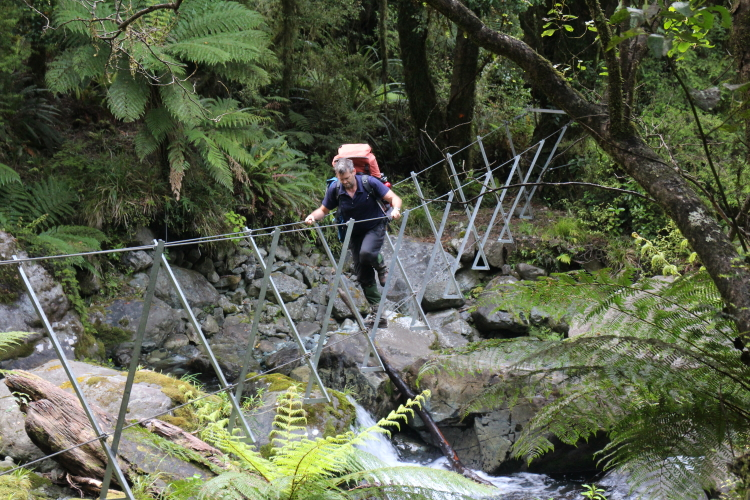 Hollyford Three Wire Bridge