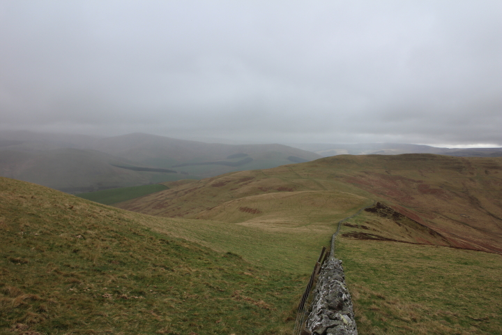 Wideopen Hill, Cheviots, St Cuthbert's Way