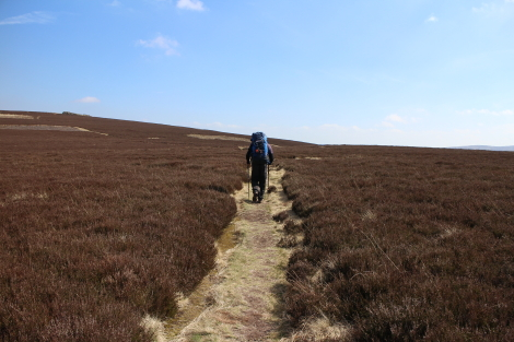 Across the tops of the Cheviot Hills