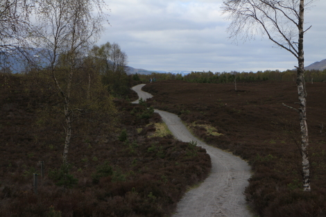 Speyside Way between Boat of Garten and Aviemore