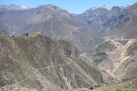 Path down to Llahuar Lodge, Colca Canyon