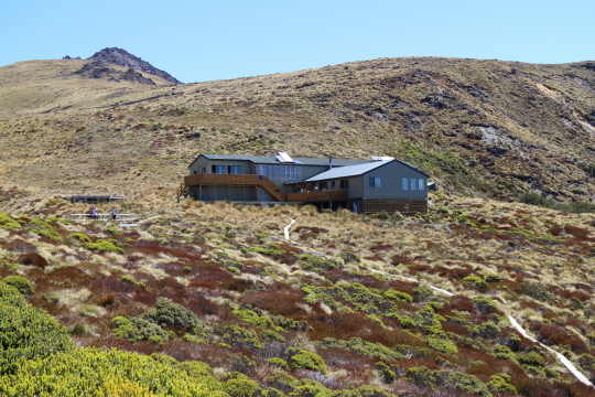 Luxmore hut, above the bushline