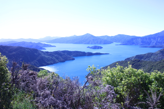 Queen Charlotte Sound - More afternoon sun