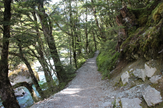 Well benched Routeburn track