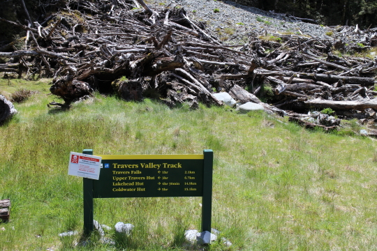 Avalanche area Nelson Lakes